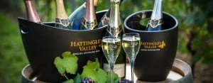 Hattingley Valley Bottles