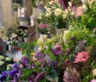 Local Business Spotlight: Moutan Florist